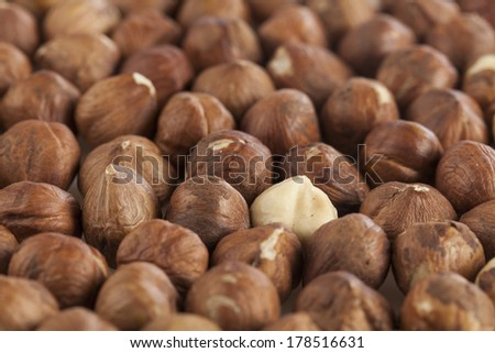 hulled hazelnuts and a white hazelnut - stock photo