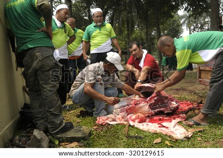 HULU KELANG, SELANGOR - SEPT 24: Malaysian Muslim worked together skinning beef before distribute to the poor and community during Eid Al Adha in Hulu Kelang, Selangor, Malaysia on September 24, 2015 - stock photo