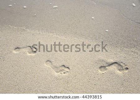 human adult footprint in the fine sand at the beach