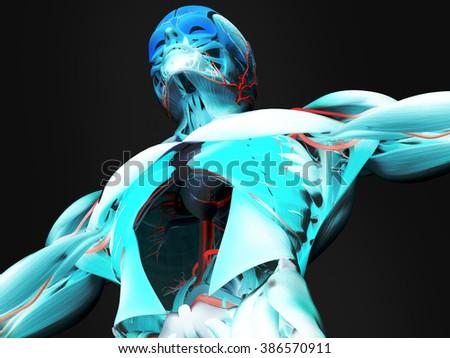 Human anatomy 3D futuristic technology scan.Torso and head. Vibrant colours. - stock photo