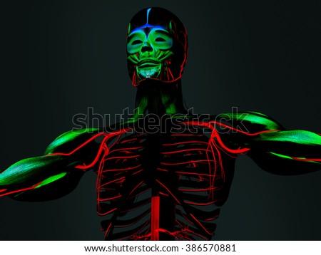 Human anatomy 3D futuristic technology scan.Torso and ribs. Vibrant colours. Sci-fi. - stock photo