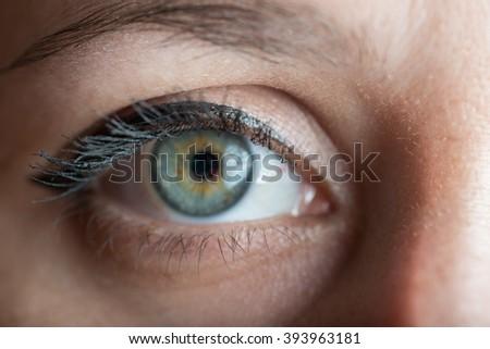 Human blue eye with reflection. Macro shot. Selective focus on eyelashes. - stock photo