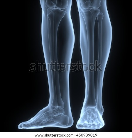Human Body Bone Joint Pains (Foot joints and Bones). 3D