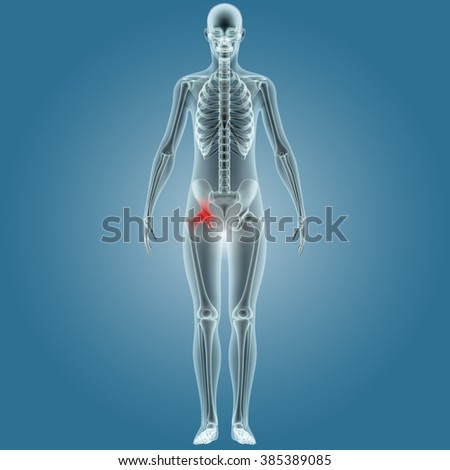 Human Body Joint Pains