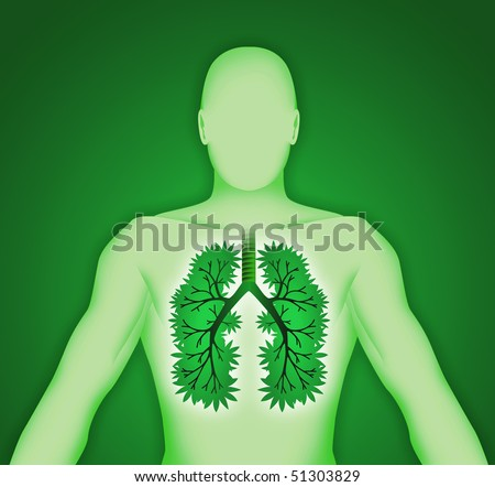 Human body three-dimensional lung tree - stock photo