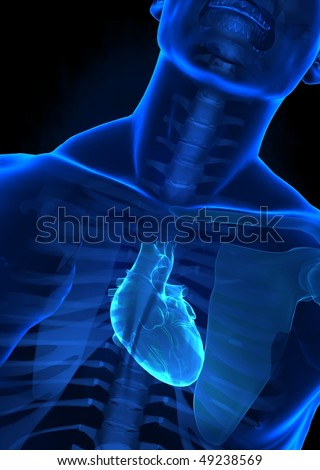 Human body with heart on x-ray view