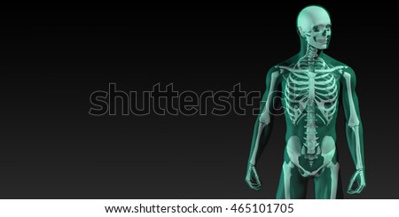 Human Bone Structure Diagram in Blue and Black 3d Render