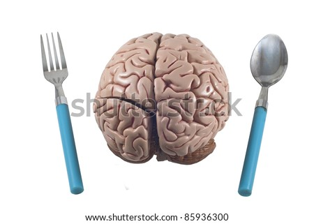human brain as food with spoon and fork, isolated - stock photo