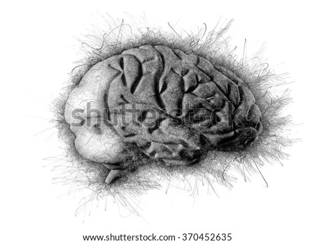 Human brain 3d illustration. Digital painting - stock photo