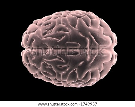 human brain from the top - stock photo