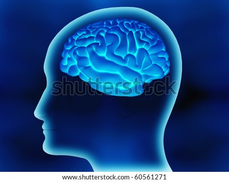 Human brain inside a head made in 3d over a blue background