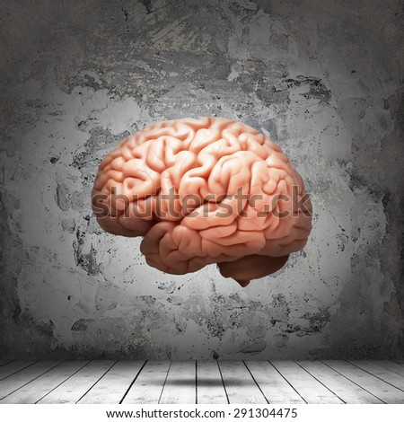 human  brain,interior room  with copyspace for text and wall background - stock photo