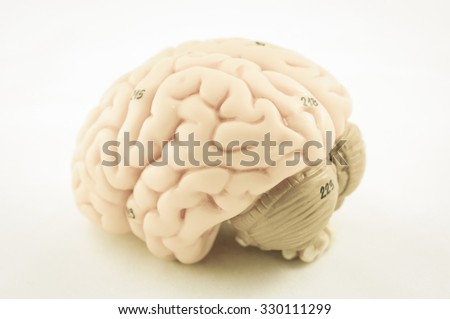human brain model with old color style - stock photo