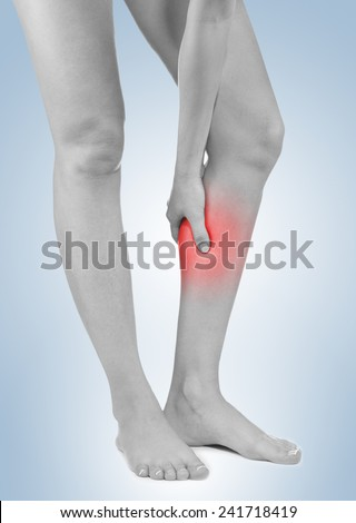 Human Calf pain with an anatomy injury caused by sports accident or arthritis as a skeletal joint problem medical health care concept. - stock photo