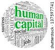 Human capital concept in tag cloud on white background - stock photo