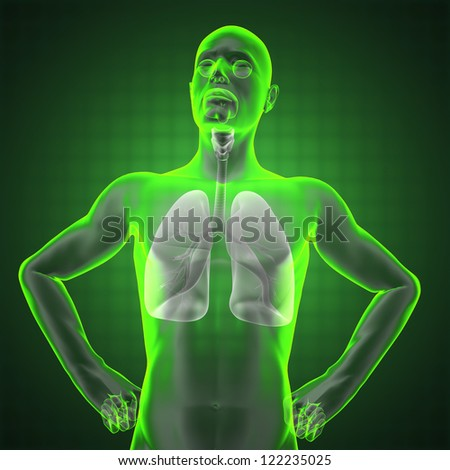 human chest radiography made in 3D - stock photo