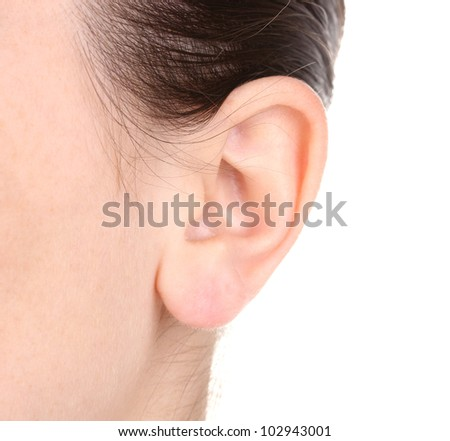 Human ear close-up isolated on white - stock photo