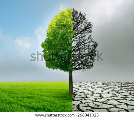 Human emotion and mood disorder as a tree shaped as two human faces with one half empty branches and the opposite side full of leaves as a medical metaphor for psychological contrast in feelings - stock photo