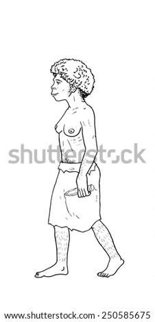 Human evolution digital  illustration, homo erectus, australopithecus,sapiens - stock photo