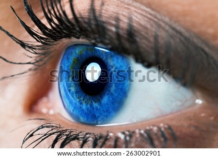 Human Eye. blue eye macro - stock photo