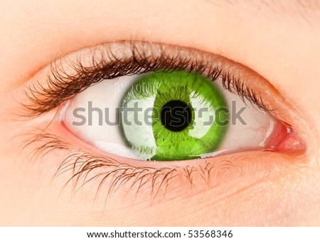 Human eye close up ... - stock photo