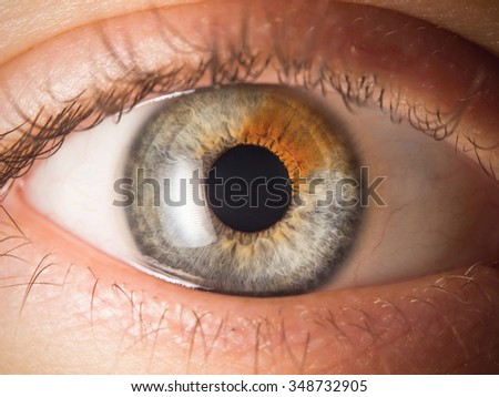 Human eye detail - stock photo