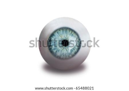 human eye isolated on white - stock photo