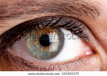 Human eye macro shooting - stock photo