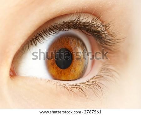 Human eye. macro shooting... - stock photo