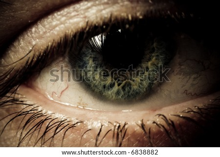 Human eye. Macro shot. Mystic colors - stock photo