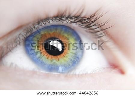 Human eye multicolored - stock photo