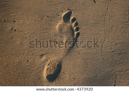 Human footprint in the sand on the beach