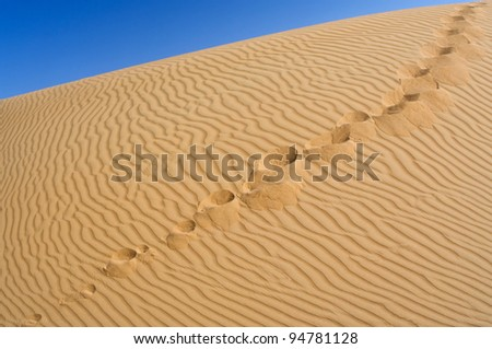 Human footprints on the yellow sand against the blue sky. Over horizon. - stock photo