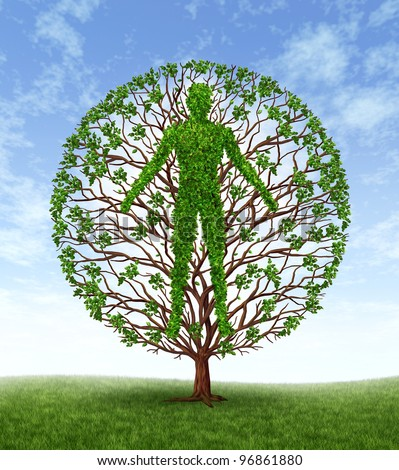 Human growth and development and personality development as a medical symbol of health as a tree with branches and green leaves in the shape of a persons anatomical body on a blue sky. - stock photo