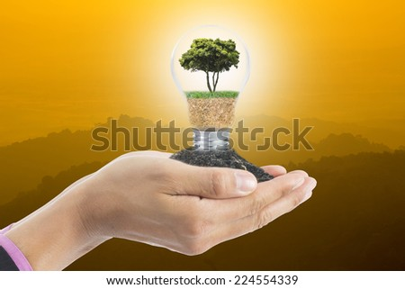 Human hand cover  growing blub idea plant for saving the world - stock photo