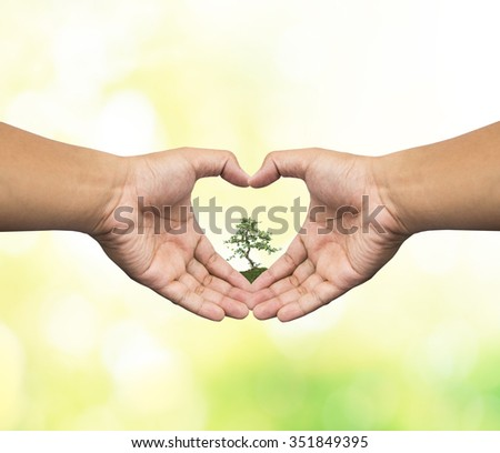Human hand Heart Shaped holding medium green plant with soil on blurred abstract. Ecology, World Environment, Tree of Knowledge concept. - stock photo