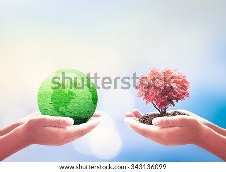 Human hand hold a green earth globe of grass and heart shape of big tree. Corporate, Organ Donation, CSR, Teamwork, World Environment Day, Sharing concept. Elements of this image furnished by NASA - stock photo
