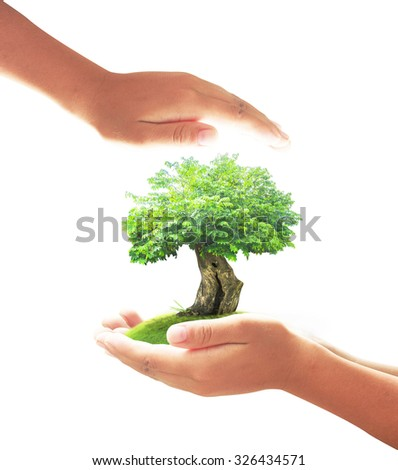 Human hand holding a big tree and beautiful green meadow with isolated on white background. Ecology, World Environment Day, Ecological City, Alternative Energy, Tree of Knowledge concept. - stock photo