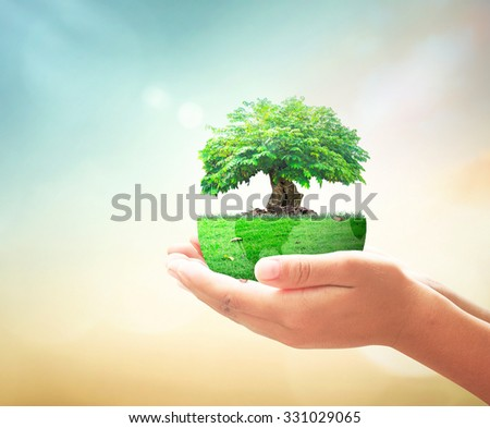 Human hand holding big tree with earth globe of grass. Investment, Ecology World Environment Day CSR Go Green Eco Friendly Investment Think Sustainable Energy Reduce Reuse Recycle Spring Time concept. - stock photo