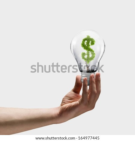 Human hand holding bulb with money tree inside. Wealth concept