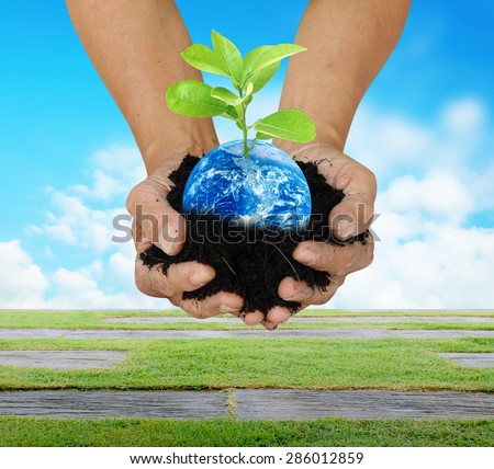 Human hand holding global in soil with little green tree for World Environment Day concept Elements of this image furnished by NASA - stock photo