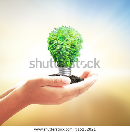 Human hand holding light bulb of tree on blurred beautiful nature background. Ecology World Thinking Day Eco Friendly Spring Time Environment Go Green Earth Hour CSR Innovation Creativity concept. - stock photo