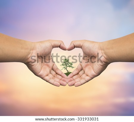 Human hand holding medium green plant with soil on blurred abstract. Ecology, World Environment, Tree of Knowledge concept. - stock photo