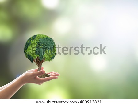 Human hand holding perfect growing tree plant on blur natural background greenery leaf: Arbor reforestation sustainable bio eco forest saving environment harmony ecosystem conservation csr campaign - stock photo