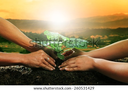 human hand planting young plant together on dirt soil against beautiful sun light in plantation field use for natural conceptual and save nature to future - stock photo