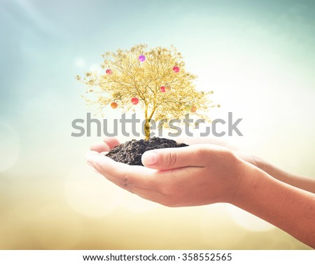 Human hands holding golden tree with fruit over blurred sunset background. Fund ROI CSR Finance Time Trust New Life Year 2016 ecology Creation Religion Bank Idea Adam Eve God Trust growing CSR concept - stock photo
