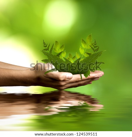 human hands with natural plants - stock photo