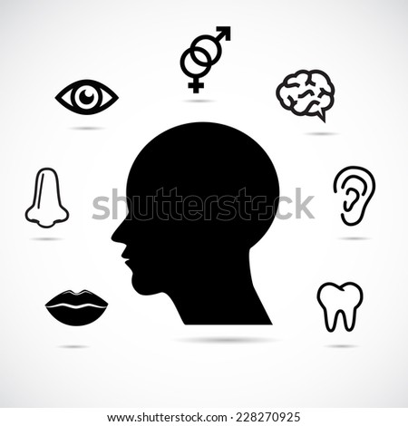 Human head and face parts. Educational illustration. - stock photo