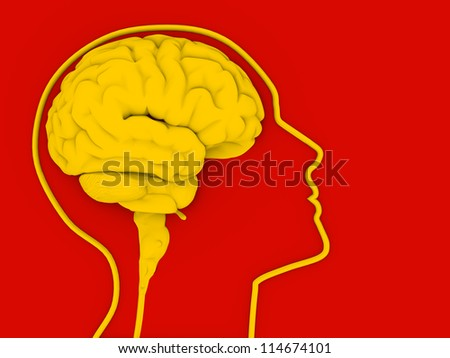 Human head with brain. 3d render illustration - stock photo