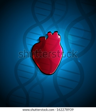 Human heart anatomy and DNA spiral at the background. - stock photo